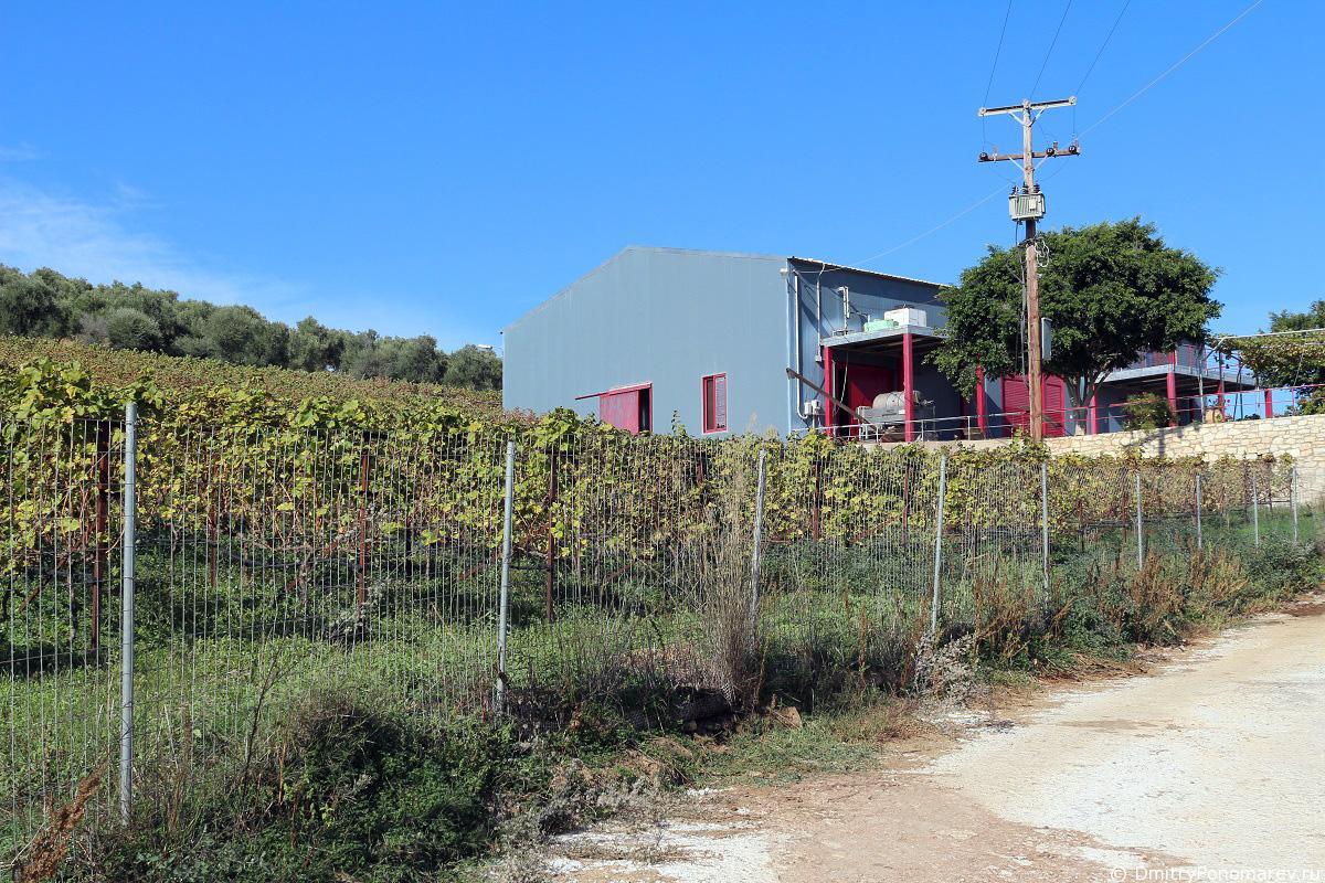 Винодельня Klados Winery в Панормо