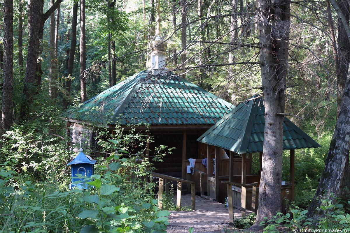 Лесной серебряный источник в с.Оранки